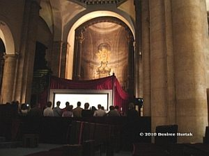 Update on the Shroud of Turin - FUTURE SCIENCE